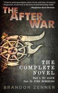 mediakit_bookcover_theafterwar