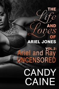 mediakit_bookcover_arielandrayuncensored